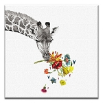 GREETING CARD - CHECKING IN GIRAFFE THUMBTACK - 38941