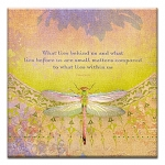 GREETING CARD - WHAT LIES WITHIN THUMBTACK  - 38987