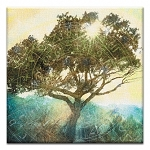 GREETING CARD - TREE OF TIME THUMBTACK  -  39182