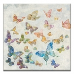 GREETING CARD - BUTTERFLY SKY  THUMBTACK   - 38988