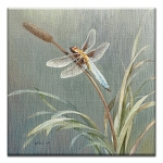 GREETING CARD - DANHUI DRAGONFLY THUMBTACK  -  38990