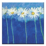 GREETING CARD - DAISIES ON BLUE THUMBTACK  - 39174
