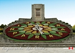 POST CARD - FLORAL CLOCK - 586 - 00628