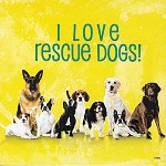MAGNET - I LOVE RESCUE DOGS - 588 - 4