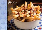 POST CARD - POUTINE - 586 - 00614