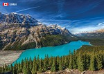 POST CARD - PEYTO LAKE - 586 - 00624